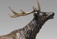 "Wapiti (Elk) / $4,600 CAD Bronze cast, 16"" L x 15 ¾"" H, Ed.12"